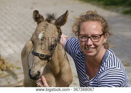 Cute Newborn Riding Horse Colt Stands Next To A Happy Smiling Young Woman At The Farmyard, Yellow Du
