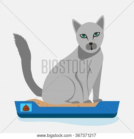Cat Sitting In Litter Box. Clipart Image. Kitty That Sits In A Cat Litter Tray. Cat In The Toilet .