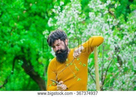 Man Farmer. Farmer Hold Garden Scissors. Serious Man Preparing To Planting. Farmer Works In Garden.