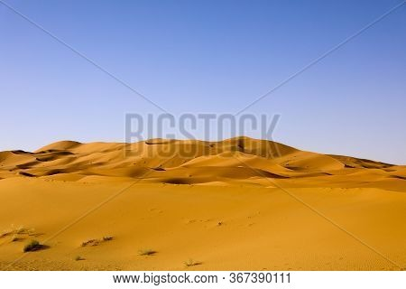 The Sahara The Largest Arid Desert In The World, Stars In Morocco With A Mixture Of Sand And Rock.