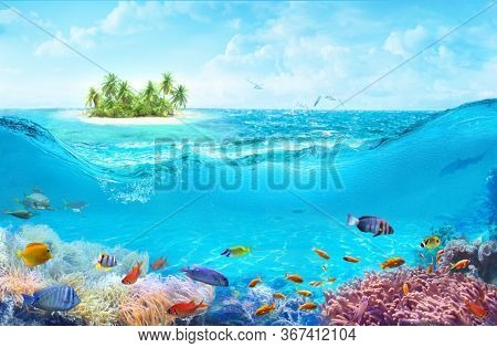 Animals of the underwater sea world. A beach on a tropical island. Colorful tropical fish. Life in the coral reef.