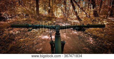 Beautiful Autumn Mountain Bike Trail Seen From The Eyes Of A Biker, With A Mountain Bike Handlebars