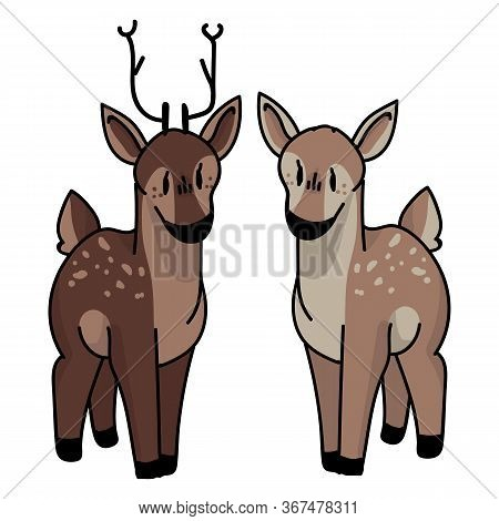 Cute Forest Doe And Buck Vector Illustration. Buck Deer With Antlers. Childlish Hand Drawn Doodle St