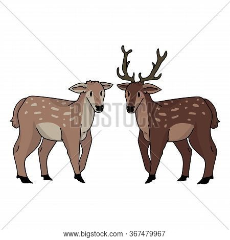 Cute Forest Doe And Stag Love Vector Illustration. Buck Deer With Antlers. Childlish Hand Drawn Dood
