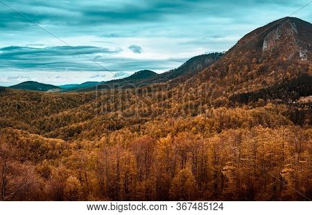 Autumnal Forest Nature Landscape. Mountain Layers Landscape. Autumn In Mountain Forest Landscape. Fo
