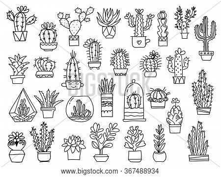 Cactuses. Hand Drawn Outline Cactus. Vector Set Cacti, Aloe And Leaves Collection Of Exotic Plants H