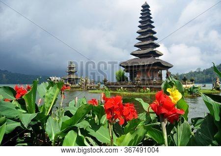 Canna Lily Flowers Or Cannas Flora Of Pura Ulun Danu Bratan Or Pura Bratan Hindu Shaivite Shiva Temp