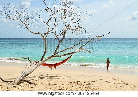 Mahe, Seychelles - July 08, 2011: Tropical Vacation. Tourist Girl Near Died Tree On Sandy Beach On S