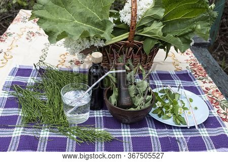 On The Table Is A Basket Of Rhubarb And Lilac, A Plate With Mint Leaves And Wild Strawberry Flowers.