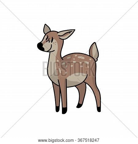Cute Forest Doe Vector Illustration. Buck Deer With Antlers. Childlish Hand Drawn Doodle Style. For