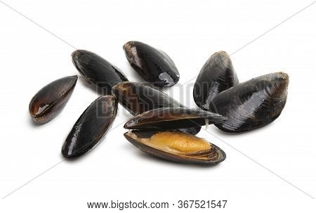 Mussels Shellfish Seafood Isolated On White Background