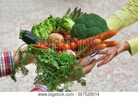 Senior Farmer Man Holding In Hands Harvest From His Orchard And Giving It To Young Boy. Assortment O