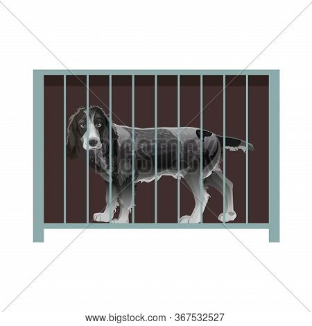 Animals Shelter. Dog Spaniel Inside A Cage.