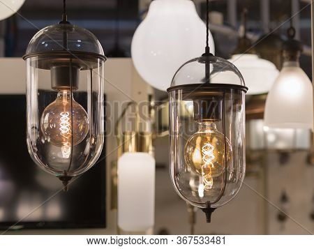 Two Bulbs Hanging: Vintage Electric Light Bulb With Incandescent Filament.