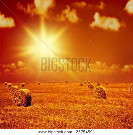 Image of beautiful orange sunset on dry wheat field, many golden rye rolls on farmland, countryside landscape with bright yellow evening sunlight, rural corn meadow, autumn harvest season