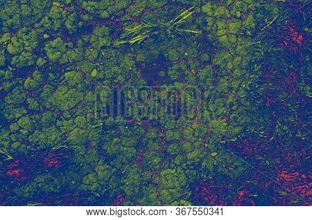 Dry Land Cracked Earth For Concept Design. Abstract Background. Barren Earth. Crack Soil Ground Text