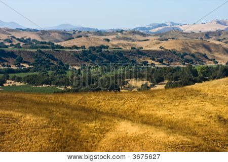 Santa Ynez Valley With Dry Grass Green Trees