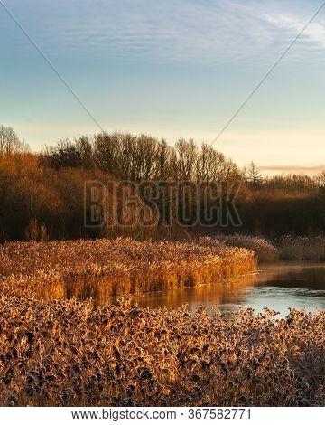 The Shore Of Pennington Flash, Uk At Sunrise