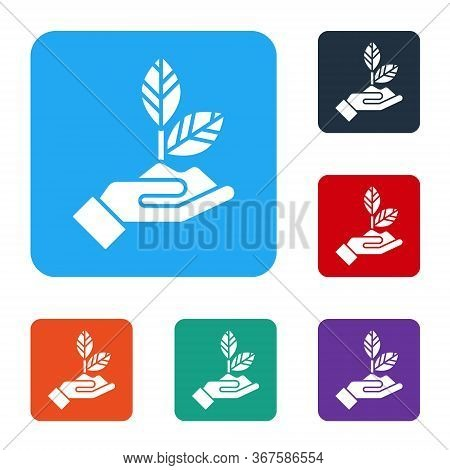 White Plant In Hand Of Environmental Protection Icon Isolated On White Background. Seed And Seedling