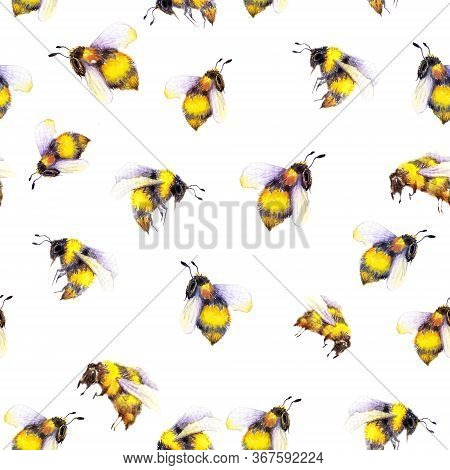 Seamless Pattern With Bumblebees. Watercolor Illustration On White Background.