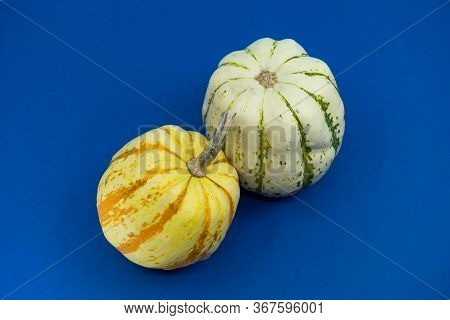 Two-toned Speckled Round Ornamental Pumpkins Or Gourds In White And Orange On A Bright Blue Backgrou