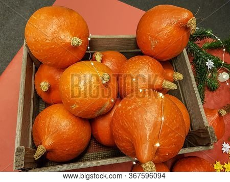 Wooden Crate With Fresh Colorful Orange Pumpkin Decorations Festooned With A String Of Party Lights
