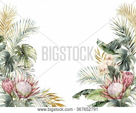 Watercolor Tropical Frame With Protea, Orchids And Palm Leaves. Hand Painted Tropical Card With Mons
