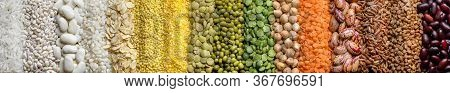 Various Legumes And Cereals: Rice, Peas, Lentils, Beans, Millet Buckwheat Chickpea. Top View. Web He