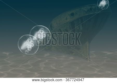 Illustration On The Stern Of An Old Sunken Steamer Lying On An Even Keel On The Muddy Sea Floor, Two
