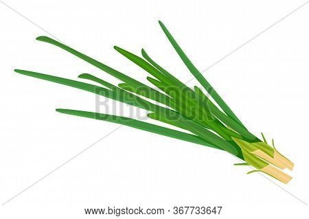 Green Onion Isolated On White Background. Raw Leek Flat Simple Design Icon. Ripe Vegetable Bitter Ch