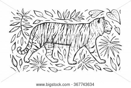 Tiger Vector Hand Drawn Sketch. Wild Animal And Leaves Isolated On White Background. Big Cat. Black