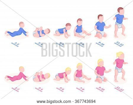 Baby Timeline Development For First Year. Infant Growth With Month Stages. Sitting, Lying, Walking T
