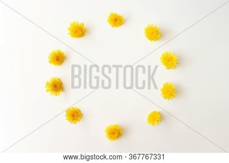 Wreath With Spring Yellow Dandelion Flowers Flat Lay On White Background Top View With Copy Space. F