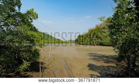Huge Field Flooded After Rain And Surrounded By Green Exotic Trees Under Pictorial Sky In Tropical H