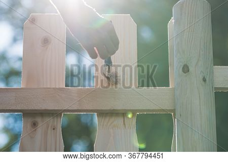 Low Angle View Of A Female Hand Painting Wooden Backyard Fence Wiith Protective Transparent Varnish,