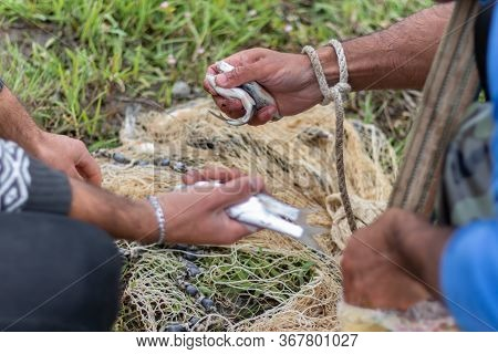 The Fisherman Caught Fish Into The Net. Hands Of Fisherman Take Fish Out Of A Net.