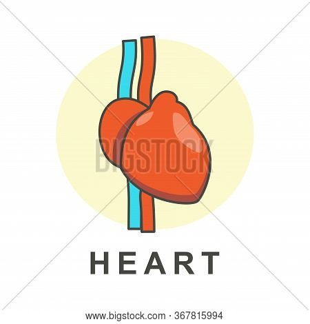 Heart Icon. Simple Heart. Heart Sign. Heart Icon Vector,  Heart Icon Vector Isolated On White Backgr