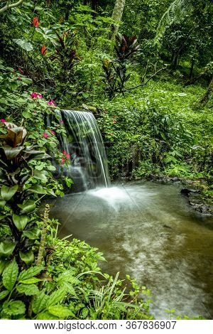Landscape. Small Waterfall Cascade Surrounded By Tropical Plants. Nature Background. Water Flow. Slo