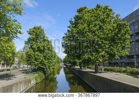 The Hague, The Netherlands - May 15 2020: Canal With Reflection Of Trees, One Man Sits In The Park,