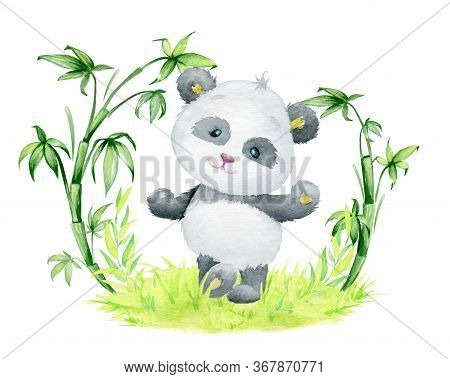 Panda, Dancing, On The Grass, Surrounded By Bamboo Branches. Watercolor Concept, With A Panda, On An