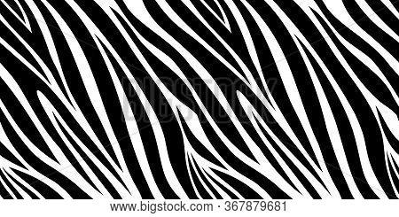 Zebra Skin Pattern. Animal Print, Black And White Stripes Background. Africa Jungle, Wildlife Vector