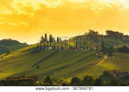 A Beautiful Sunset Over South Styria Vineyards. Famous Place For Their White Wine. Vineyard Themed B