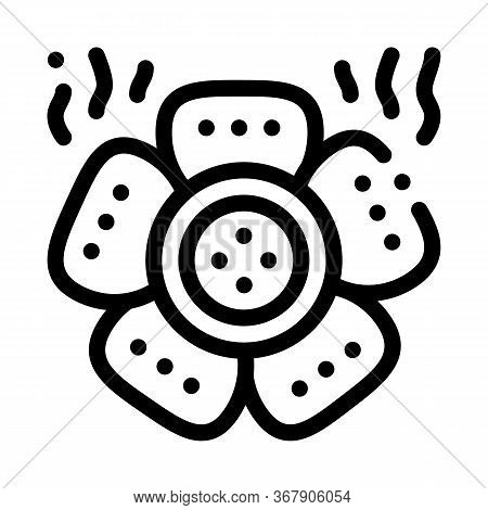 Kind Of Malaysian Flower Icon Vector. Kind Of Malaysian Flower Sign. Isolated Contour Symbol Illustr