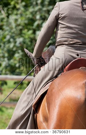 Equestrian on Brown Lusitano Horse