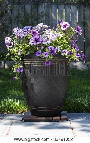 A Decorative Pot Of Purple Petunias On A Patio In A Home Garden