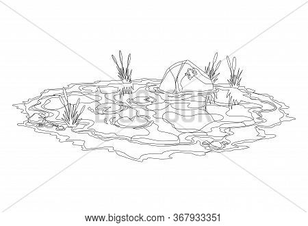 Coloring Water Pond With Reeds And Stones Around. Concept Of Open Small Swamp Lake In Natural Landsc