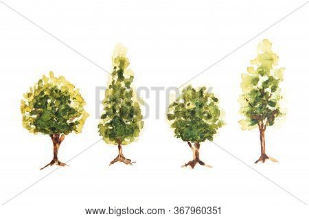 Watercolor Drawing Of Green Trees Isolated On The White Background. Handmade Illustration Of Trees.