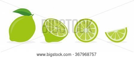 The Lime Is Set. Isolated Lime On A White Background. Vector Illustration
