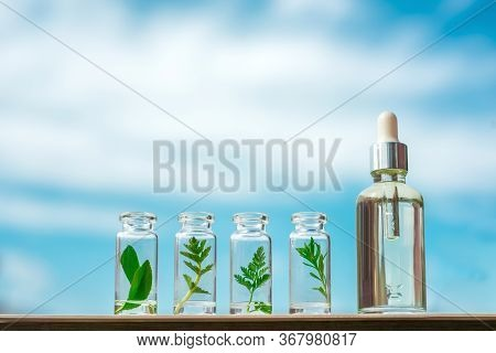 Homeopathic Oil, Serum And Bottles With Plants On A Blue Background. Concept Of Natural Organic Cosm