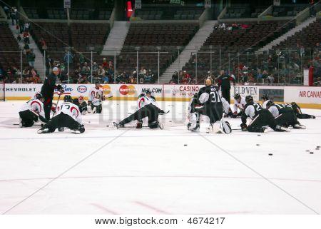 Ottawa Senators Stretches